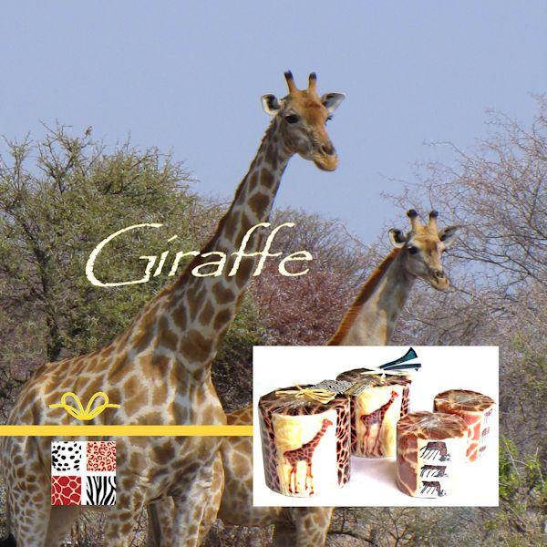 giraffecadeaus