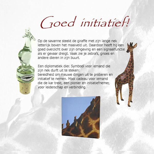 symboliek giraffer