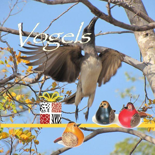 symboliek vogels