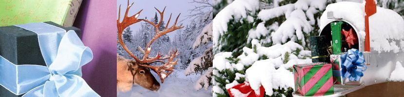 Kerstpakket Wensboom