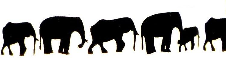 olifantenrij