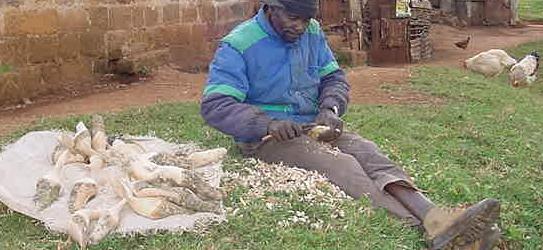 houtsnijwerk Kenia