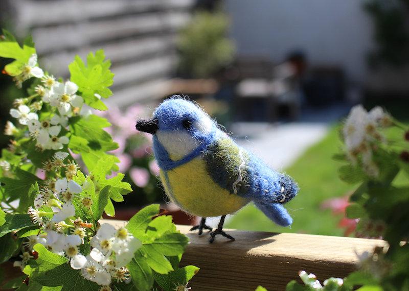 vogeltje vilt